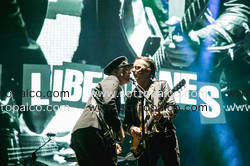 THE LIBERTINES Home Festival Treviso 3 settembre 2017